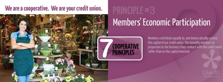 Co-op Principle #3- Members' Economic Particiaption
